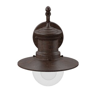 Acklins 1-Light Outdoor Barn Light