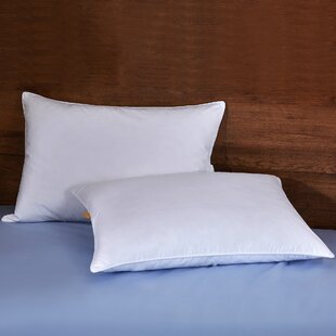 Lowell Firm Feather/Down Pillow (Set of 2) ByAlwyn Home