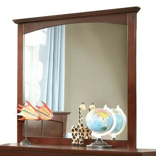Red Barrel Studio Fayia Transitional Accent Mirror