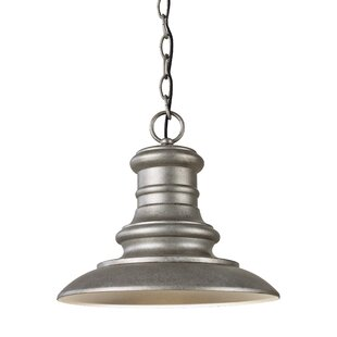 Affordable Price Colunga 1-Light Outdoor Pendant By Brayden Studio
