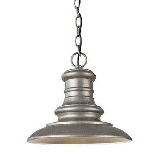 Inexpensive Colunga 1-Light Outdoor Pendant By Brayden Studio
