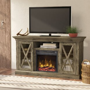 Fischer 53.80 inch  TV Stand with Fire Place in Spanish Gray