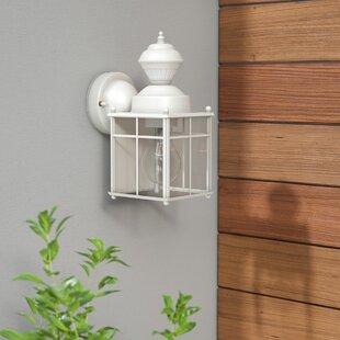 Larsen 1-Light Outdoor Wall Lantern