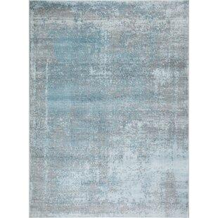 Pastel Blue Rug Wayfair