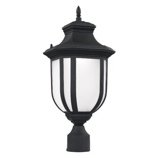 Best Review Teri Outdoor 1-Light LED Lantern Head By Fleur De Lis Living