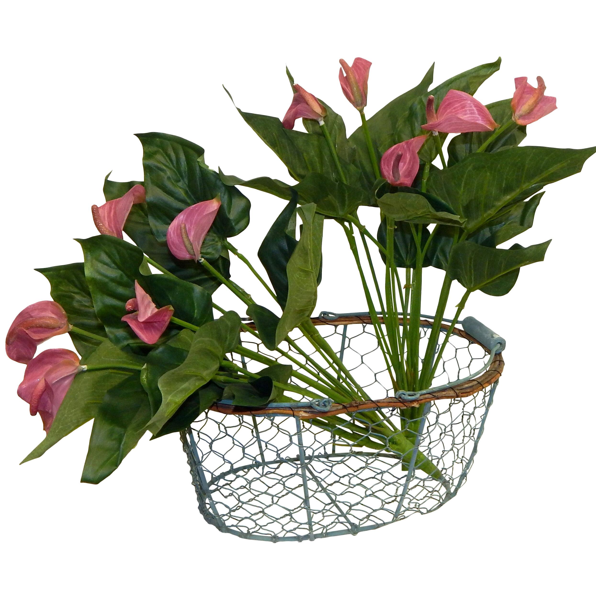 Ophelia Co 2 Piece Anthurium Calla Lilies Floral Arrangement Set