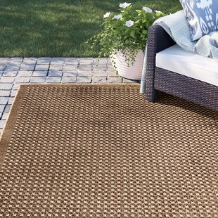 Dondale Weave Beige Indoor/Outdoor Area Rug