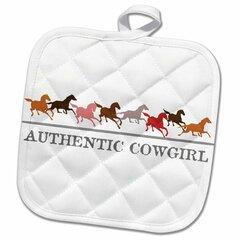 Cowgirl Decor Wayfair Ca