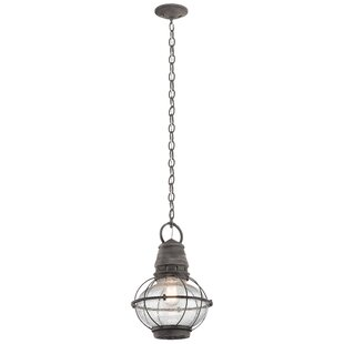 Online Reviews Seaport 1-Light Outdoor Pendant By Breakwater Bay