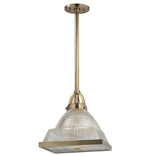Darby Home Co Alene 1-Light Novelty Pendant