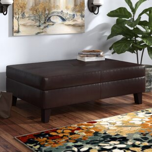 Madeleine Storage Ottoman by Darby Home Co