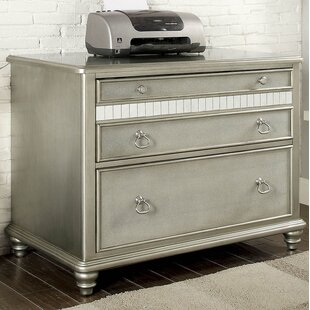 House of Hampton Dardanelle 2-Drawer Late..