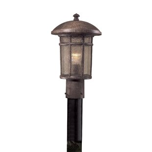 Cranston Outdoor 1-Light Lante..