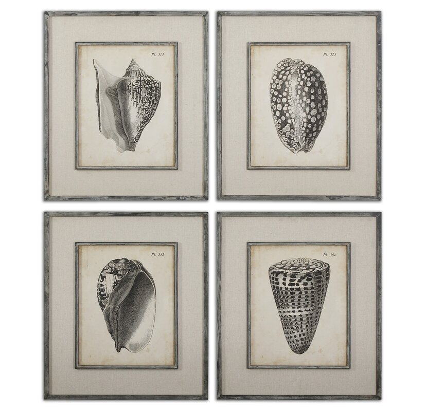 Beachcrest Home \'Vintage Diderot Shells\' 4 Piece Framed Painting ...