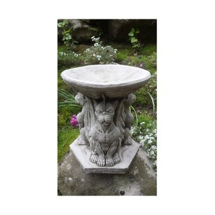Laws Stone Bird Bath By Happy Larry