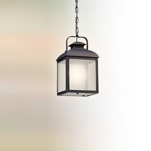 Gracie Oaks Koffi 1-Light Outdoor Pendant