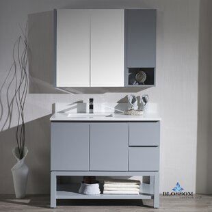 Maly Contemporary 42 Single Bathroom Vanity Set By Orren Ellis