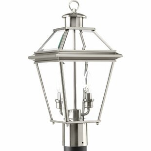 Darby Home Co Gunnora 2-Light Lantern Head
