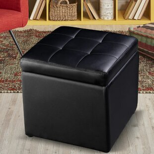 Plainview Storage Ottoman
