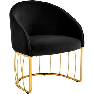 Mercer41 Rosalyn Velvet Accent Armchair