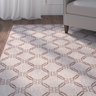 Cochrane Natural Indoor/Outdoor Area Rug By Charlton Home
