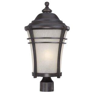 World Menagerie Petersen 1-Light Lantern Head