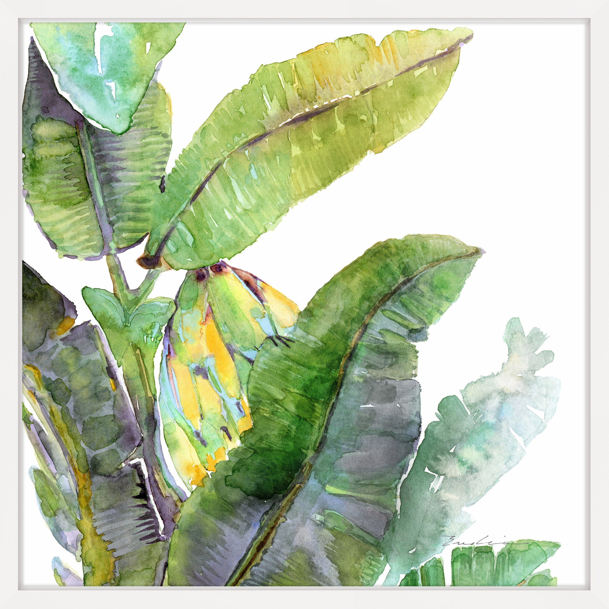 Bay Isle Home Banana Leaves One Framed Watercolor Painting Print Reviews Wayfair
