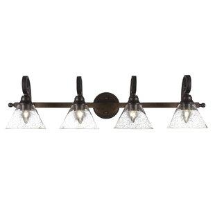 Alcott Hill Herzig 4-Light Glass Vanity Light