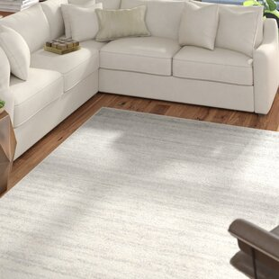 Best Reviews Mcguire Ivory/Silver Area Rug By Mercury Row