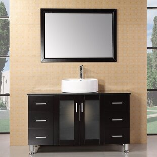 https://secure.img1-fg.wfcdn.com/im/59208640/resize-h310-w310%5Ecompr-r85/2849/28491489/Palm+Springs+47%2522+Single+Bathroom+Vanity+Set+with+Mirror.jpg