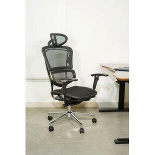 Symple Stuff Janessa Ergonomic Mesh Office Chair