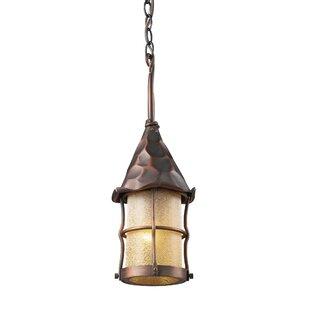 Landmark Lighting Rustica 1-Light Outdoor Hanging Lantern