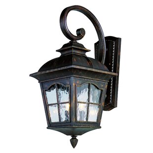 Freeborn 2-Light Outdoor Wall Lantern