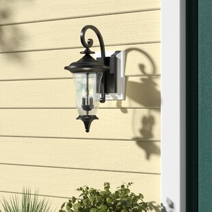 Jeremiah Outdoor Wall Lantern by Fleur De Lis Living