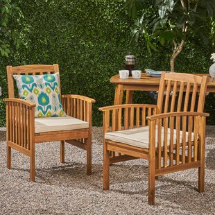 Bottoms Patio Dining Chair with Cushions (Set of 2)