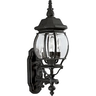 Alcott Hill Triplehorn 3-Light Outdoor Sconce