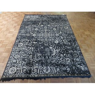 Compare & Buy One-of-a-Kind Josephson Hand-Knotted Wool Black Area Rug ByCanora Grey