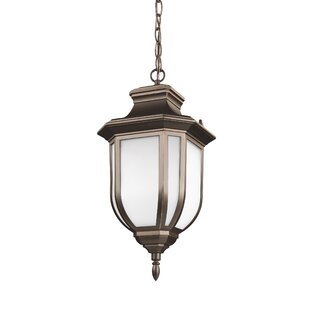 Fleur De Lis Living Teri 1-Light Outdoor Hanging Lantern