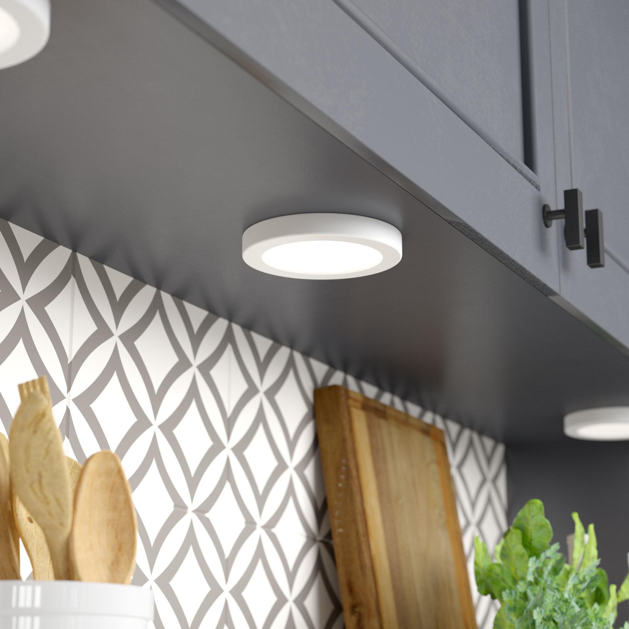 Ebern Designs Adamsburg 1 Light Simple Circle Led Flush Mount Reviews Wayfair