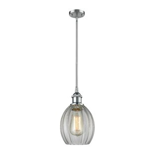 Raylene 1-Light Cone Pendant by Ivy Bronx
