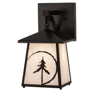 Yeldell Outdoor Wall Lantern by Loon Peak