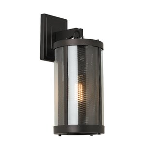 Patton 1-Light Outdoor Wall Lantern