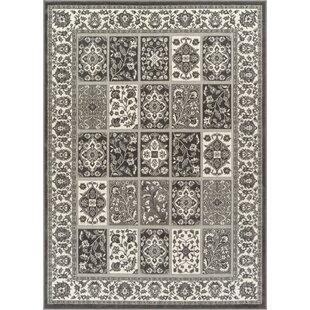 Top Reviews Hartl Ornamental Panel Silver/White Area Rug By Bungalow Rose