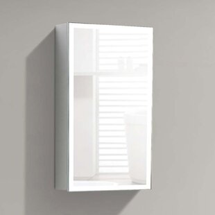 Ashim 18 x 31 Surface Mount Frameless Medicine Cabinet with Adjustable Shelves and LED Lighting by Wrought Studio