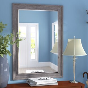 Three Posts Modesto Transitional Driftwood Wall Mirror