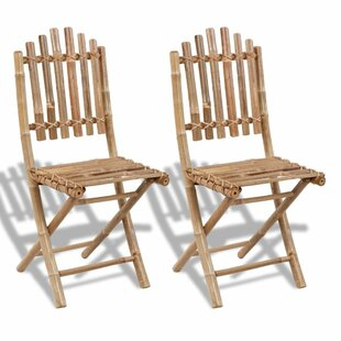 Fargo Folding Garden Chair (Set Of 2) By Bay Isle Home