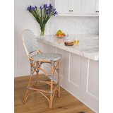 Tawanna Bar & Counter Stool by Bayou Breeze