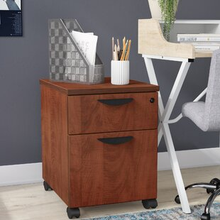 Linh Box File 2-Drawer Mobile Vertical Filing Cabinet