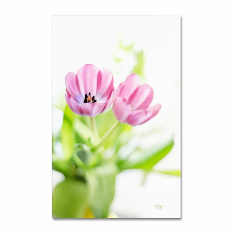 Trademark Art Pink Tulips Drenched In Light By Lois Bryan Photographic Print On Wrapped Canvas Wayfair