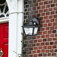 Breakwater Bay Neillsville Exterior 1-Light Outdoor Wall Lantern (Set of 2)